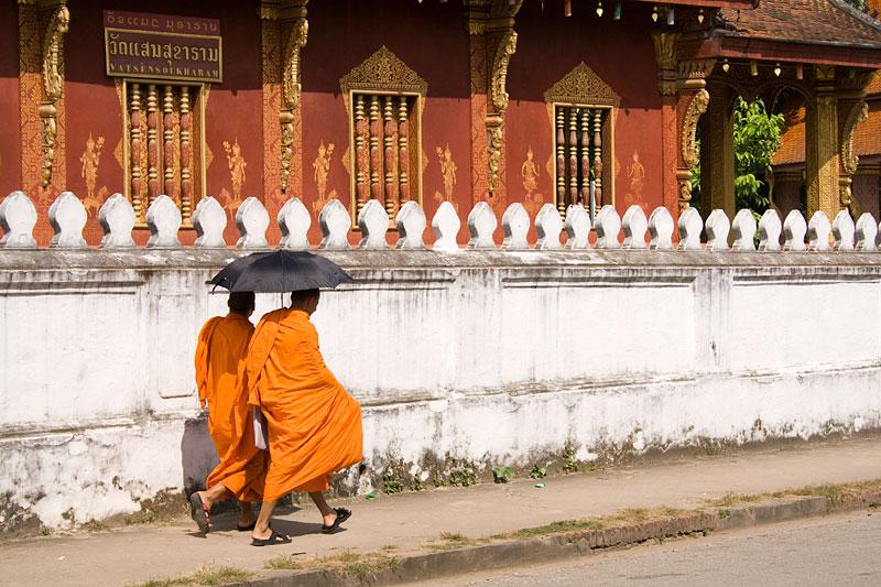 Mnisi, Luang Prabang, Laos